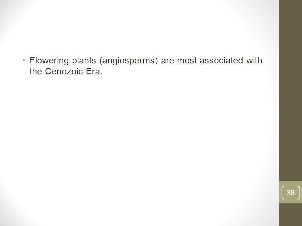 Flowering plants (angiosperms) are most associated with the Cenozoic Era. 38