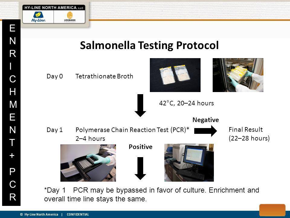 Salmonella Testing Protocol Day 0Tetrathionate Broth Day 1Polymerase Chain Reaction Test (PCR)* 2–4 hours Negative Final Result (22–28 hours) Positive 42°C, 20–24 hours *Day 1PCR may be bypassed in favor of culture.
