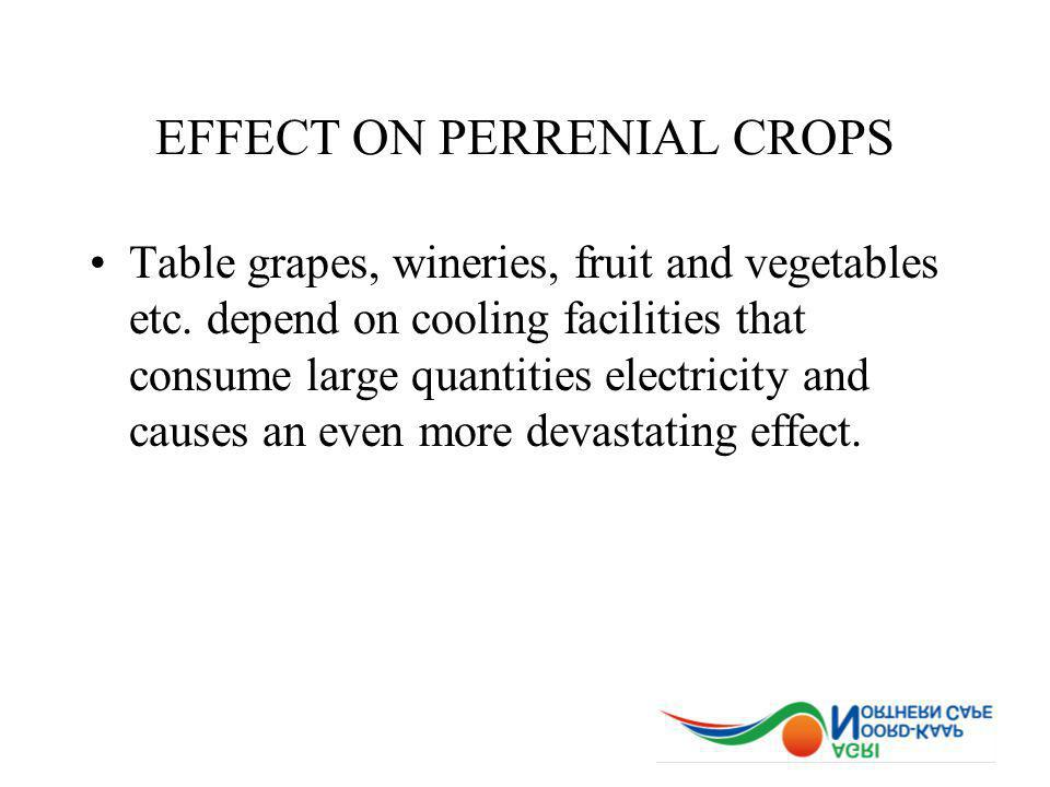 EFFECT ON PERRENIAL CROPS Table grapes, wineries, fruit and vegetables etc.