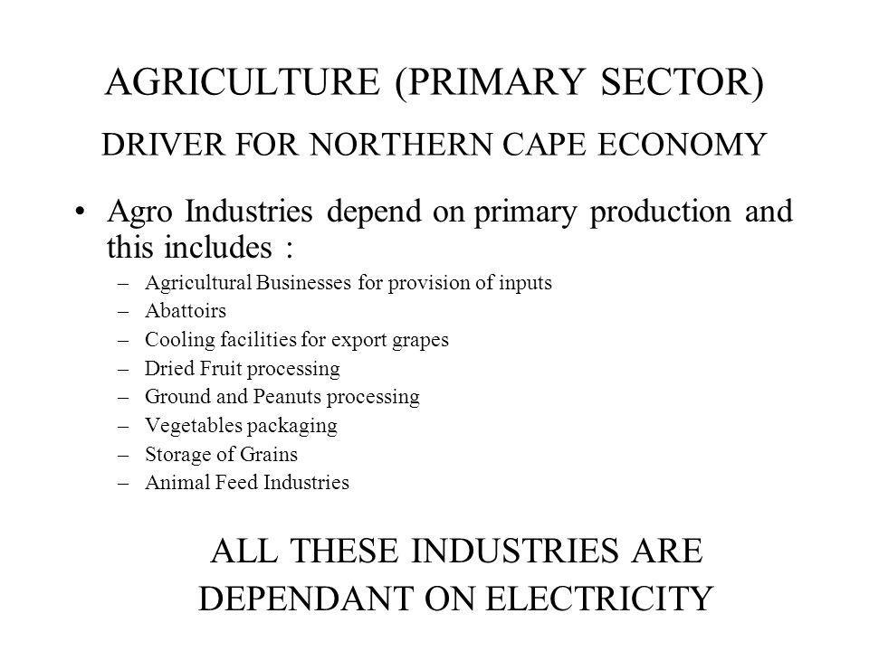 AGRICULTURE (PRIMARY SECTOR) DRIVER FOR NORTHERN CAPE ECONOMY Agro Industries depend on primary production and this includes : –Agricultural Businesses for provision of inputs –Abattoirs –Cooling facilities for export grapes –Dried Fruit processing –Ground and Peanuts processing –Vegetables packaging –Storage of Grains –Animal Feed Industries ALL THESE INDUSTRIES ARE DEPENDANT ON ELECTRICITY
