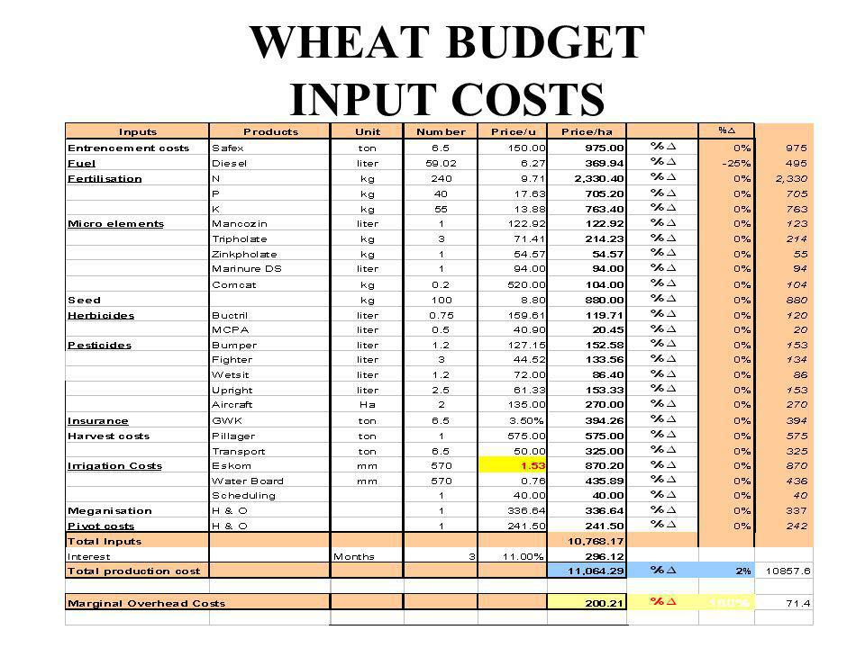 WHEAT BUDGET INPUT COSTS