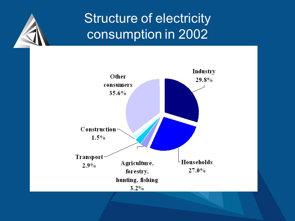 Structure of electricity consumption in 2002