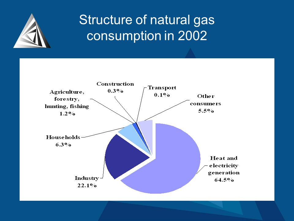 Structure of natural gas consumption in 2002
