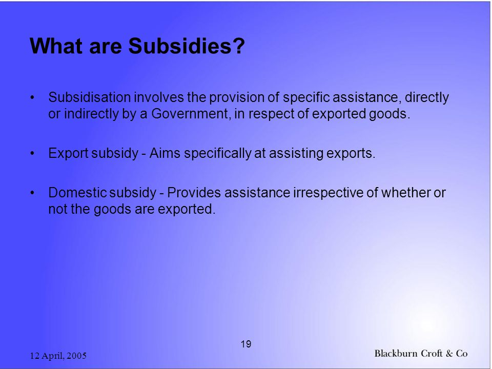 12 April, 2005 19 What are Subsidies.