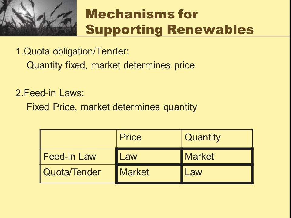Mechanisms for Supporting Renewables 1.Quota obligation/Tender: Quantity fixed, market determines price 2.Feed-in Laws: Fixed Price, market determines quantity PriceQuantity Feed-in LawLawMarket Quota/TenderMarketLaw
