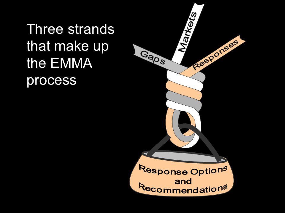 Three strands that make up the EMMA process