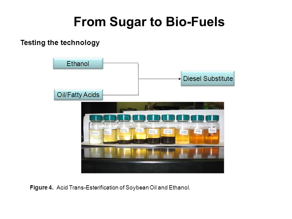 From Sugar to Bio-Fuels Testing the technology Figure 4.