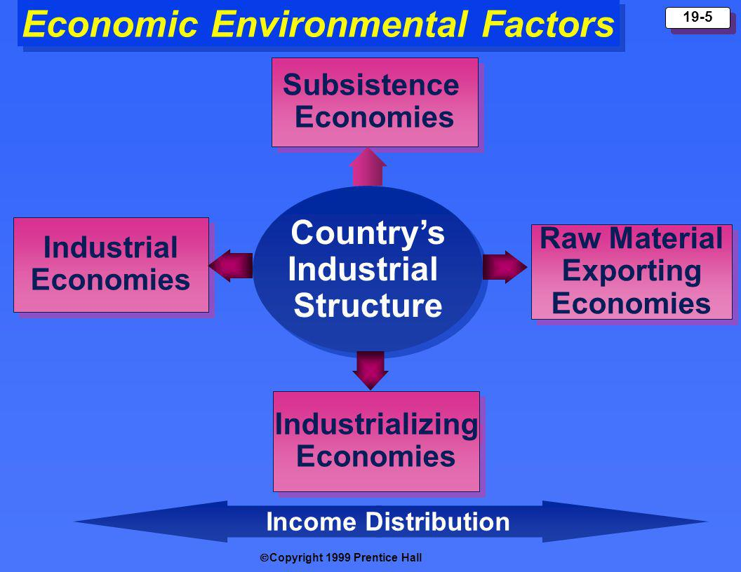 Copyright 1999 Prentice Hall 19-5 Economic Environmental Factors Countrys Industrial Structure Countrys Industrial Structure Subsistence Economies Subsistence Economies Raw Material Exporting Economies Raw Material Exporting Economies Industrializing Economies Industrializing Economies Industrial Economies Industrial Economies Income Distribution