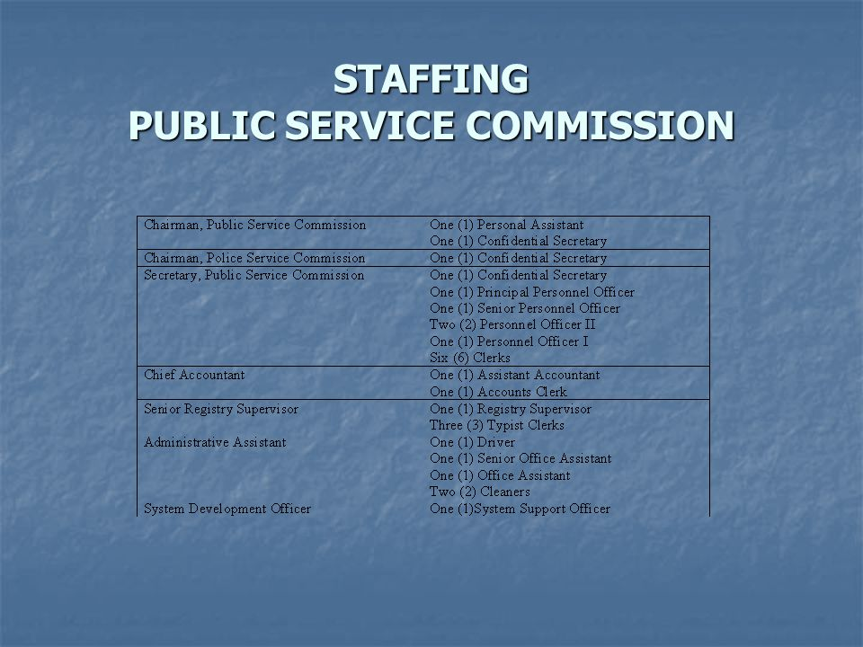 STAFFING PUBLIC SERVICE COMMISSION