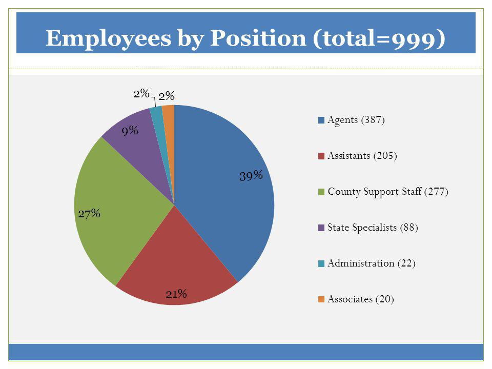 Employees by Position (total=999)
