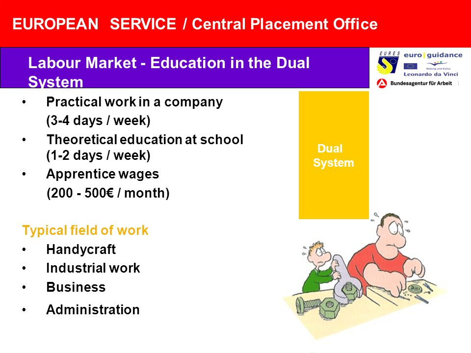 EUROPEAN SERVICE / Central Placement Office Practical work in a company (3-4 days / week) Theoretical education at school (1-2 days / week) Apprentice wages (200 - 500 / month) Typical field of work Handycraft Industrial work Business Administration Labour Market - Education in the Dual System Dual System