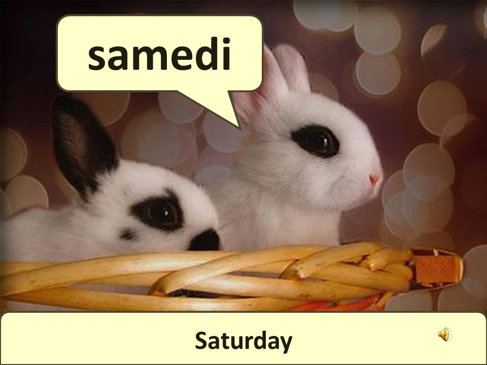And, finally, the weekend! Le week-end !