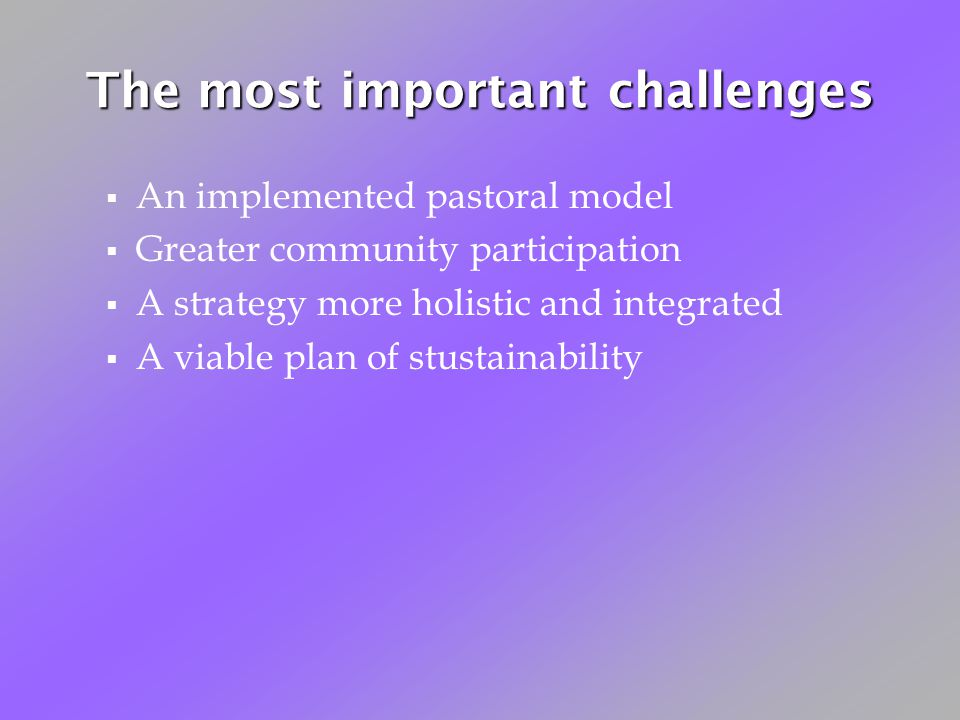 The most important challenges An implemented pastoral model Greater community participation A strategy more holistic and integrated A viable plan of stustainability