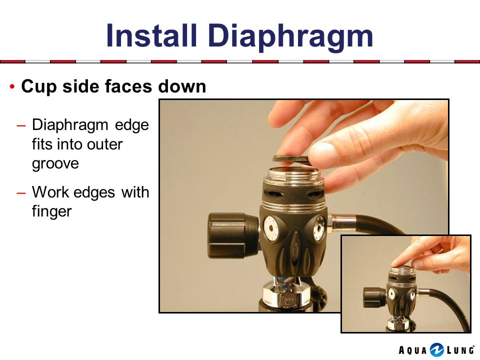 Install Diaphragm Cup side faces down –Diaphragm edge fits into outer groove –Work edges with finger