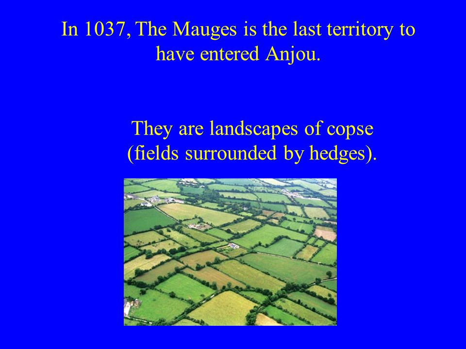 In 1037, The Mauges is the last territory to have entered Anjou.