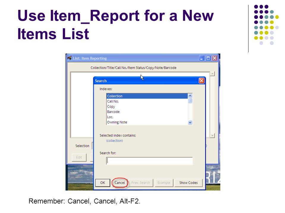 Use Item_Report for a New Items List Remember: Cancel, Cancel, Alt-F2.