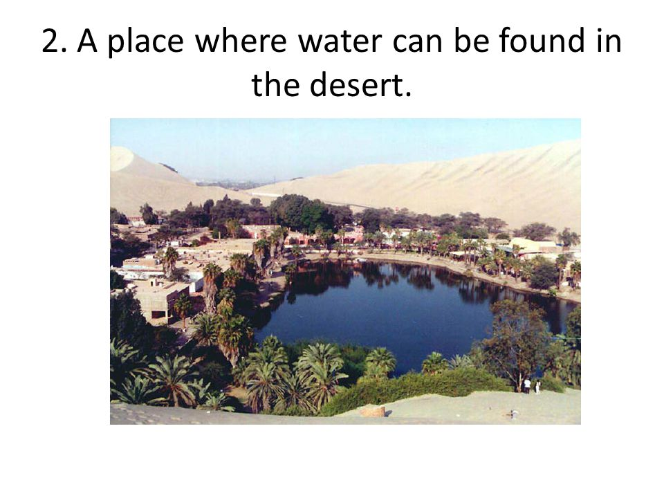 2. A place where water can be found in the desert.