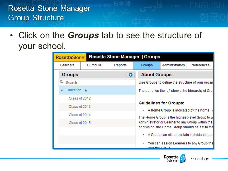 Click on the Groups tab to see the structure of your school. Rosetta Stone Manager Group Structure