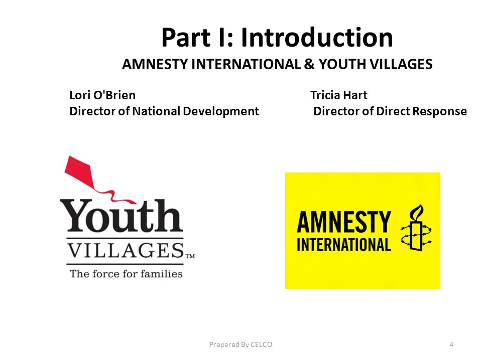 Part I: Introduction AMNESTY INTERNATIONAL & YOUTH VILLAGES Lori O BrienTricia Hart Director of National Development Director of Direct Response Prepared By CELCO4