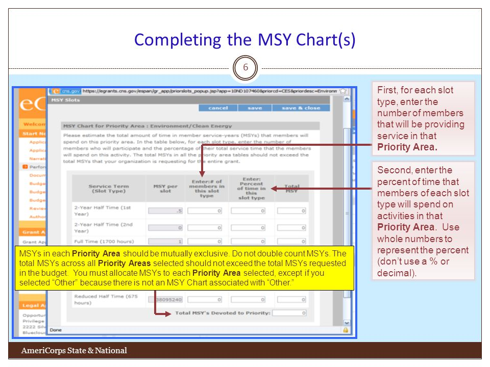 Completing the MSY Chart(s) 6 AmeriCorps State & National First, for each slot type, enter the number of members that will be providing service in that Priority Area.