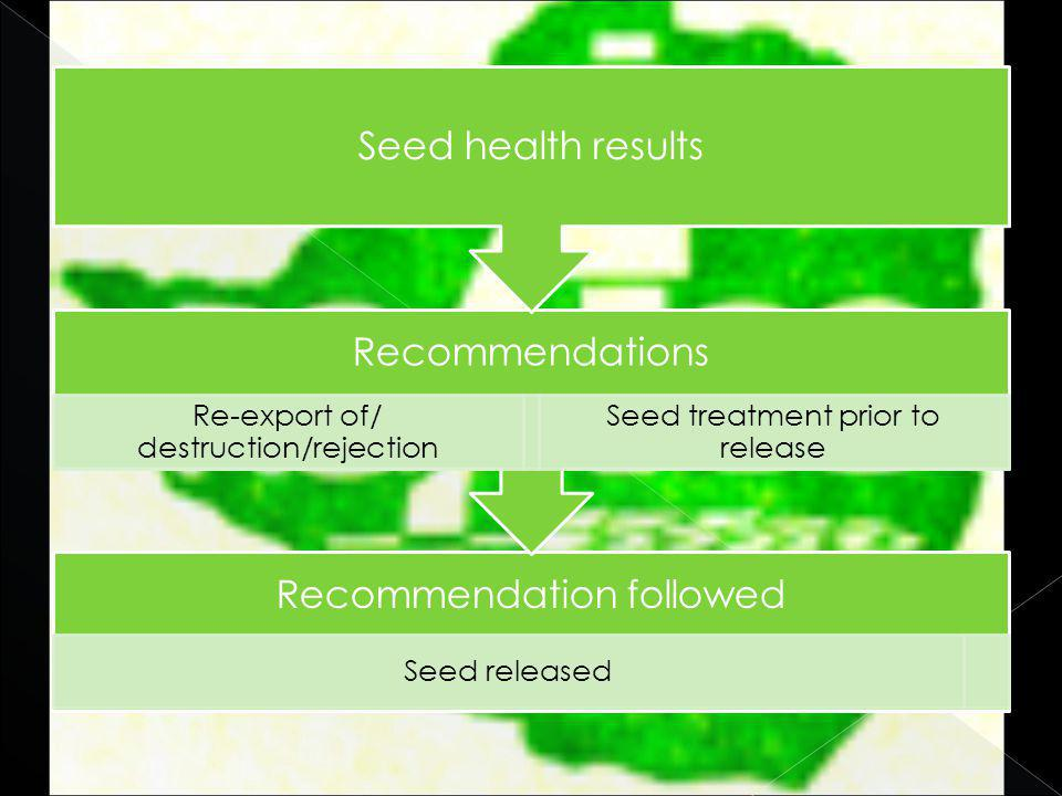 Recommendation followed Seed released Recommendations Re-export of/ destruction/rejection Seed treatment prior to release Seed health results