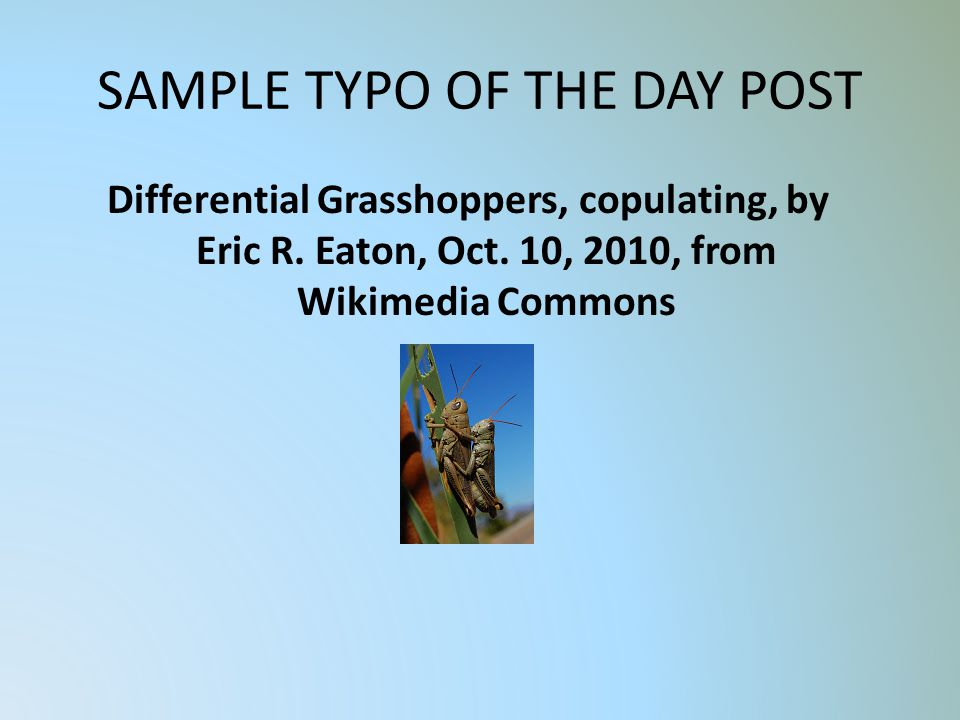 SAMPLE TYPO OF THE DAY POST Differential Grasshoppers, copulating, by Eric R.
