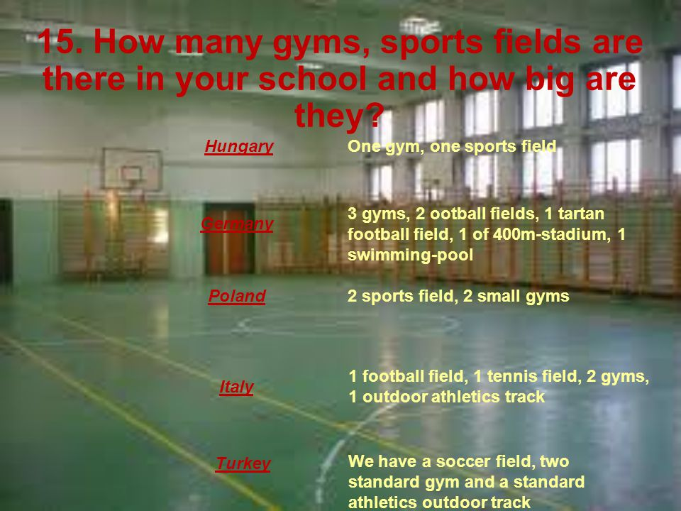 15. How many gyms, sports fields are there in your school and how big are they.
