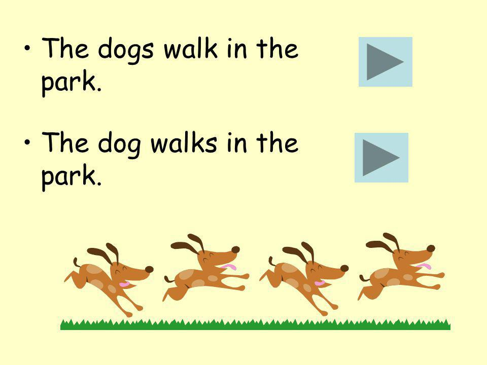 The dogs walk in the park. The dog walks in the park.