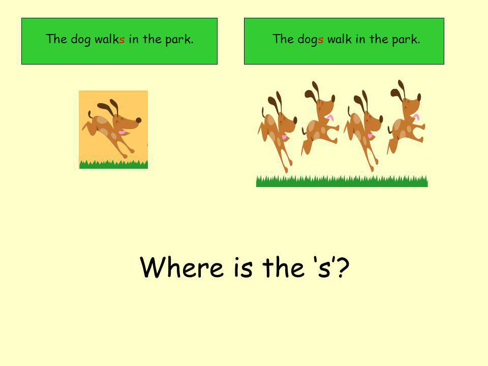 The dogs walk in the park.The dog walks in the park. Where is the s