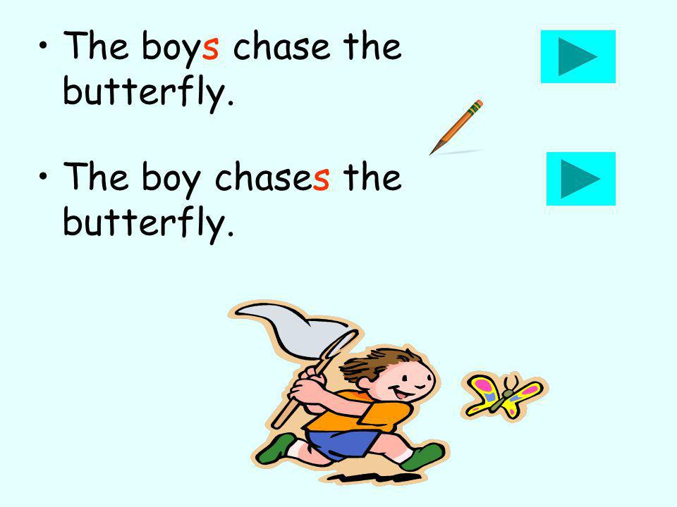 The boys chase the butterfly. The boy chases the butterfly.