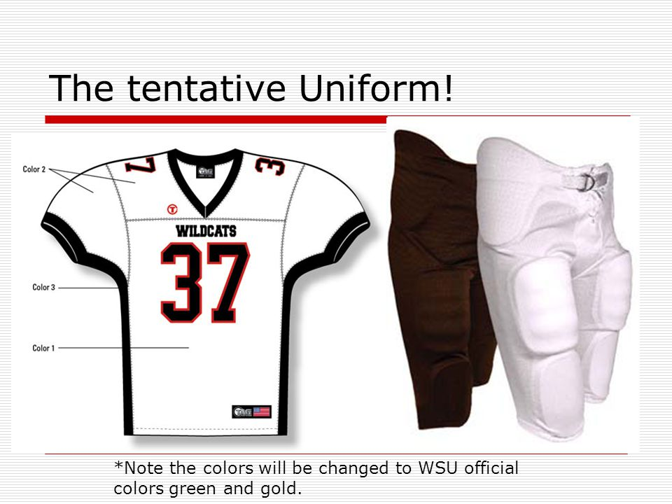 The tentative Uniform! *Note the colors will be changed to WSU official colors green and gold.