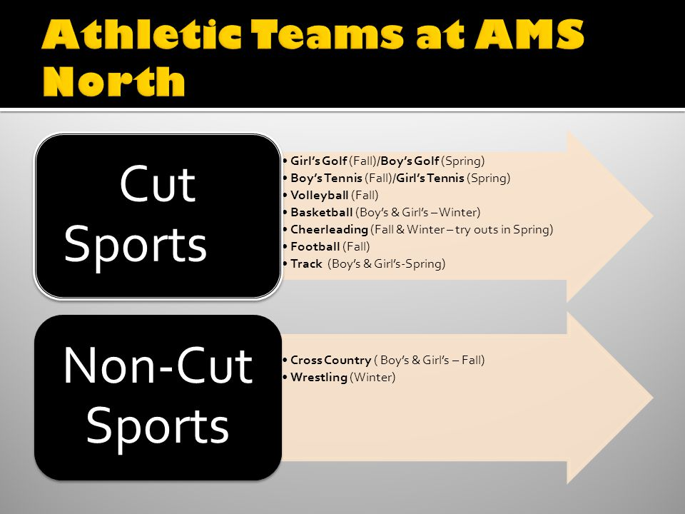 Girls Golf (Fall)/Boys Golf (Spring) Boys Tennis (Fall)/Girls Tennis (Spring) Volleyball (Fall) Basketball (Boys & Girls – Winter) Cheerleading (Fall & Winter – try outs in Spring) Football (Fall) Track (Boys & Girls-Spring) Cut Sports Cross Country ( Boys & Girls – Fall) Wrestling (Winter) Non-Cut Sports