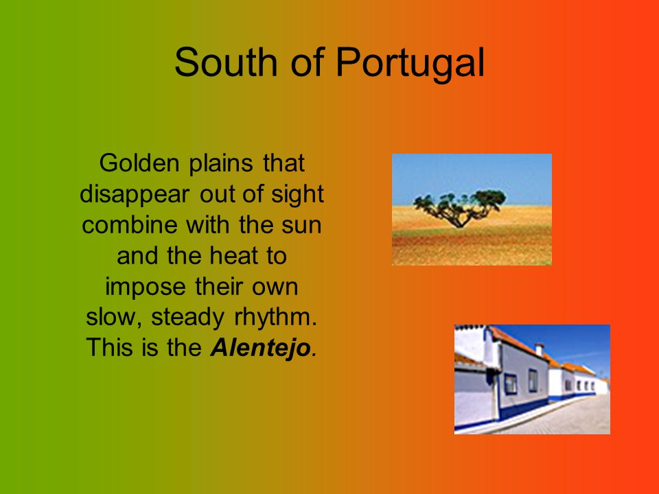 South of Portugal Golden plains that disappear out of sight combine with the sun and the heat to impose their own slow, steady rhythm.