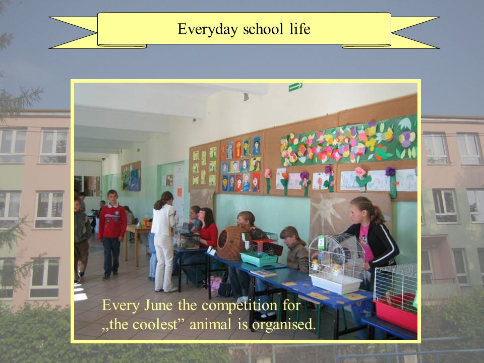 Everyday school life Every June the competition for the coolest animal is organised.