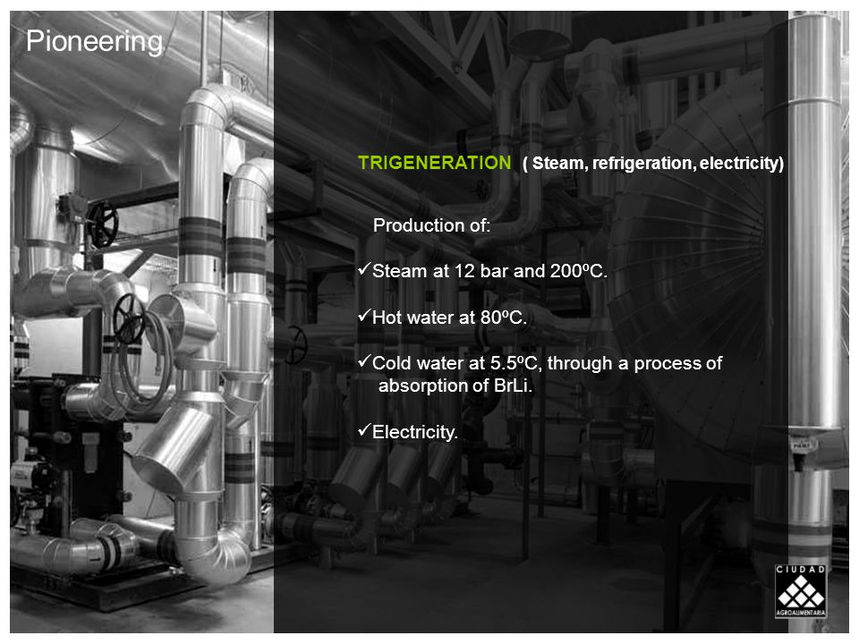 TRIGENERATION ( Steam, refrigeration, electricity) Production of: Steam at 12 bar and 200ºC.