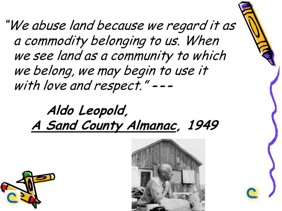 We abuse land because we regard it as a commodity belonging to us.