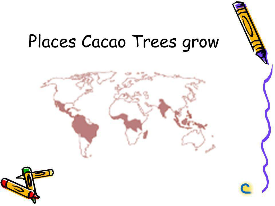 Places Cacao Trees grow