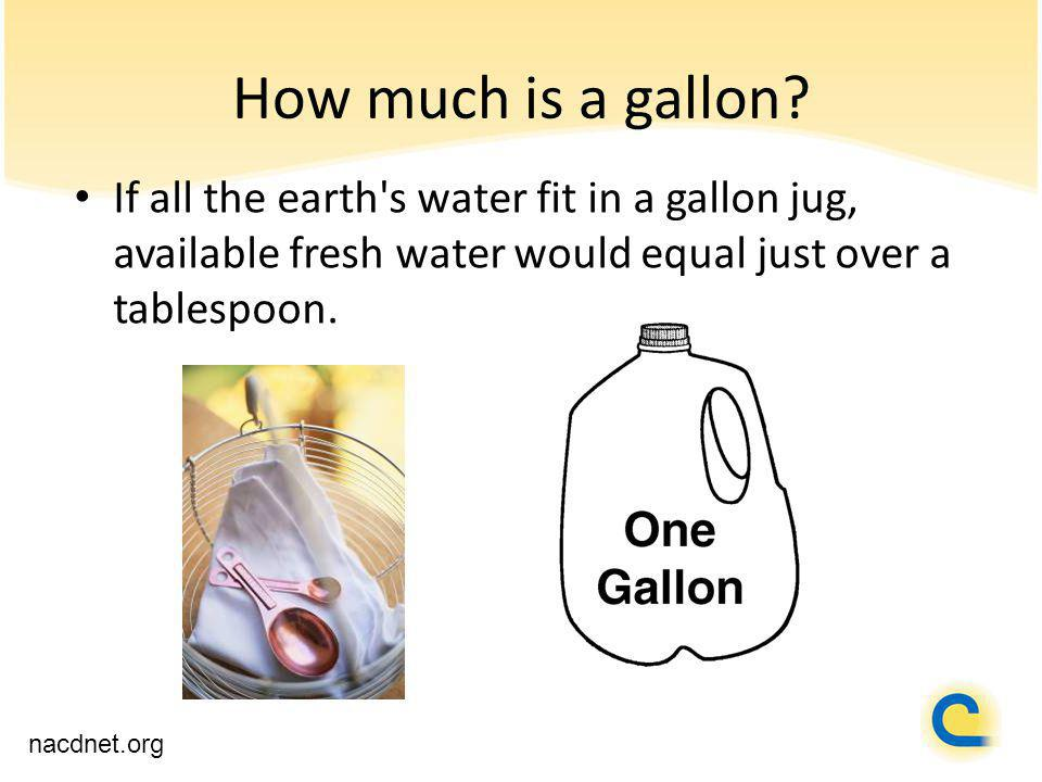 How much is a gallon.