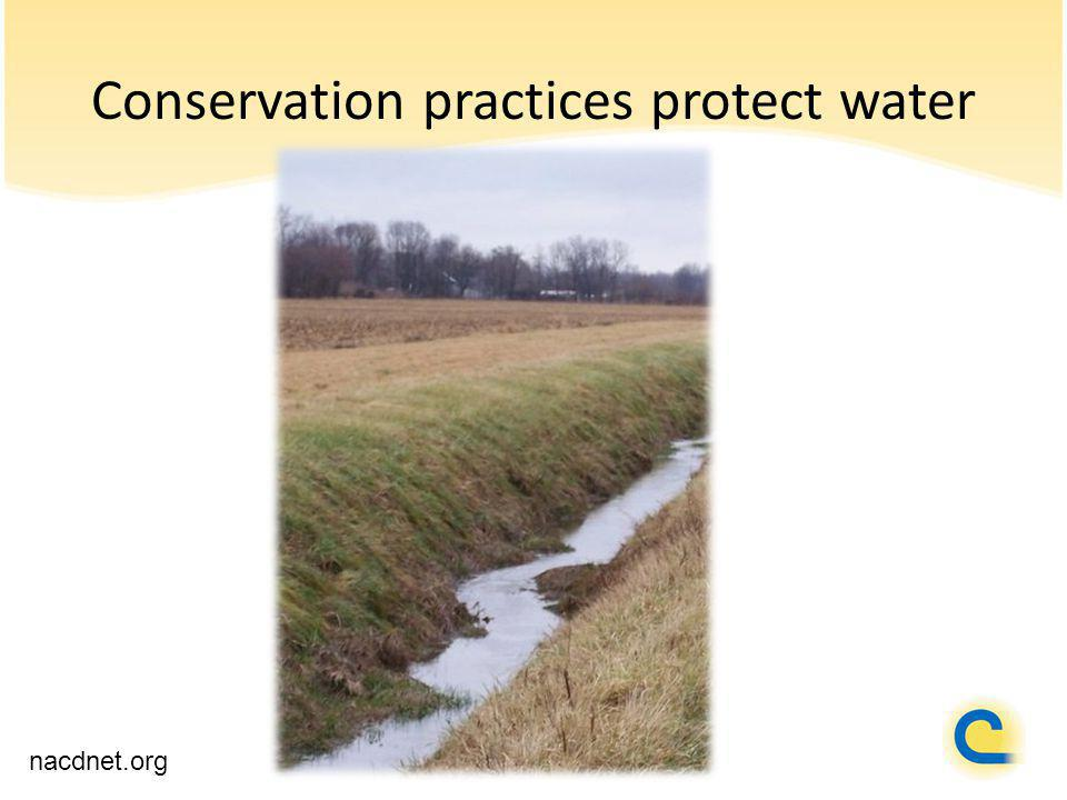 Conservation practices protect water nacdnet.org