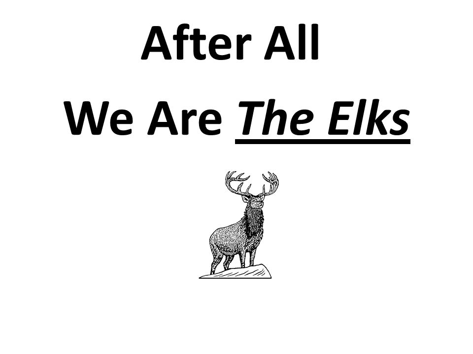 After All We Are The Elks