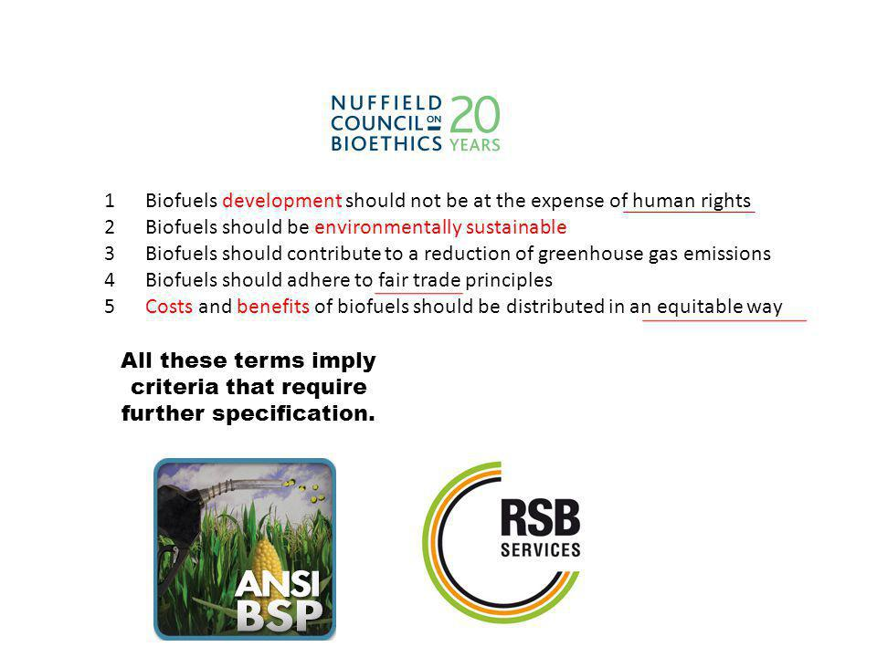 1 Biofuels development should not be at the expense of human rights 2 Biofuels should be environmentally sustainable 3 Biofuels should contribute to a reduction of greenhouse gas emissions 4 Biofuels should adhere to fair trade principles 5 Costs and benefits of biofuels should be distributed in an equitable way All these terms imply criteria that require further specification.