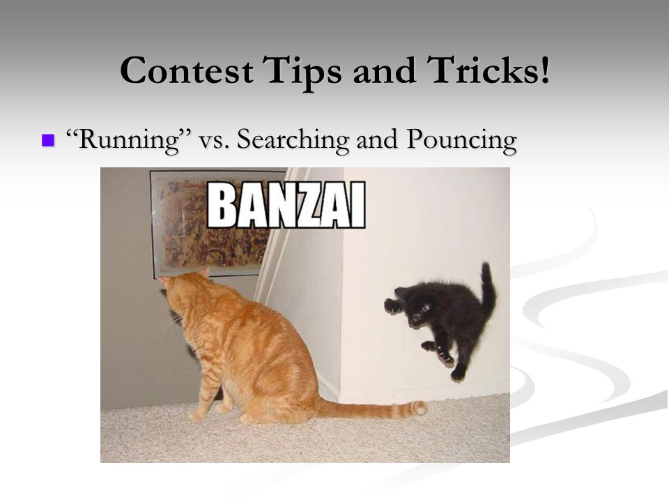 Contest Tips and Tricks! Running vs. Searching and Pouncing Running vs. Searching and Pouncing
