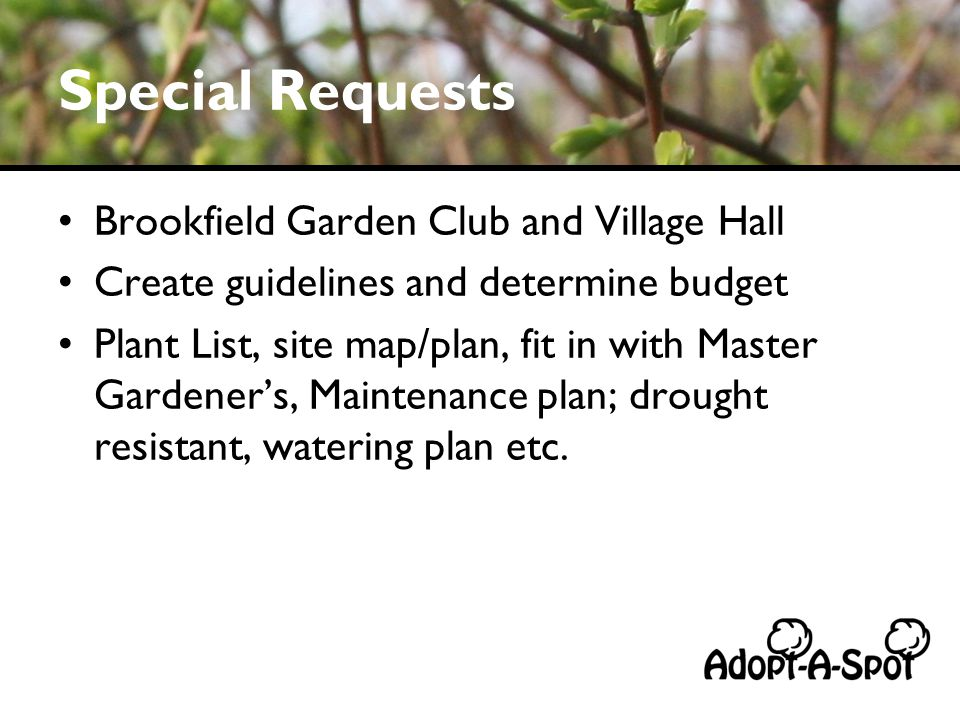 Special Requests Brookfield Garden Club and Village Hall Create guidelines and determine budget Plant List, site map/plan, fit in with Master Gardeners, Maintenance plan; drought resistant, watering plan etc.