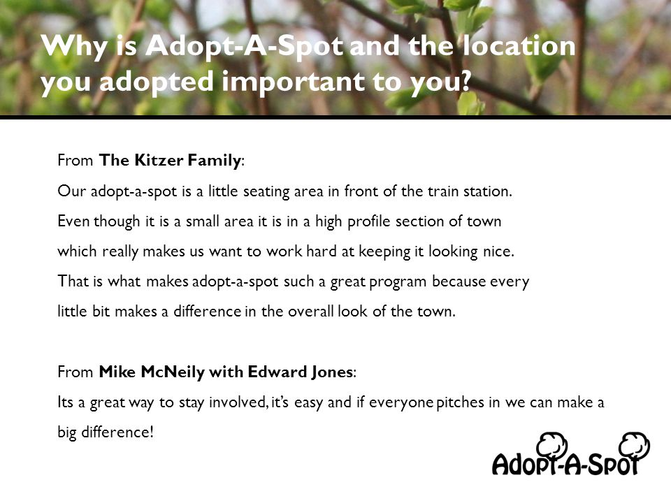 Why is Adopt-A-Spot and the location you adopted important to you.