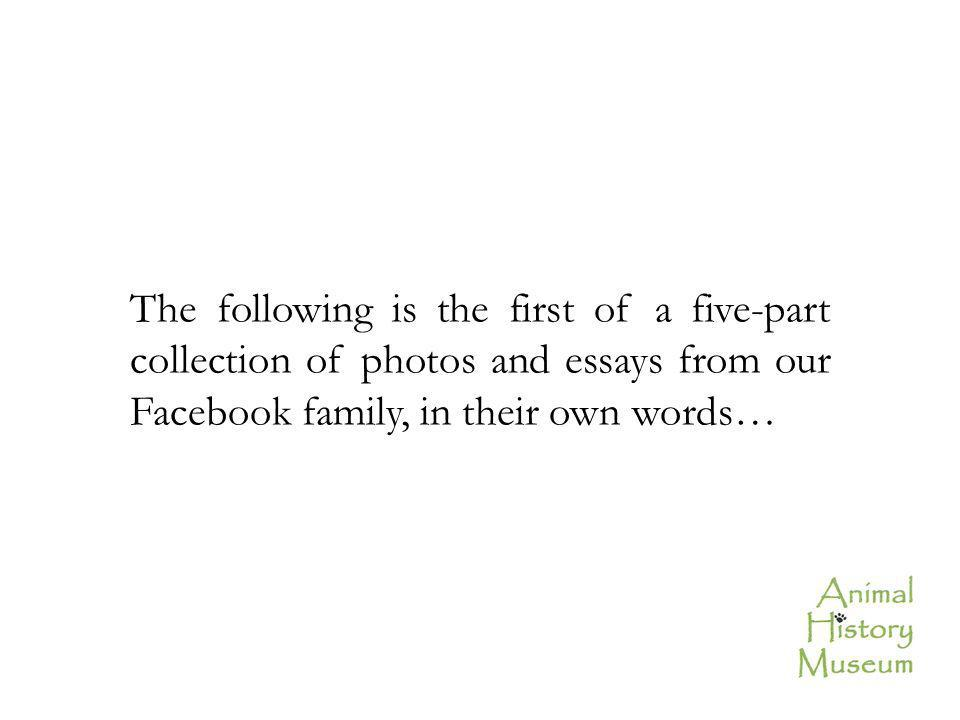The following is the first of a five-part collection of photos and essays from our Facebook family, in their own words…