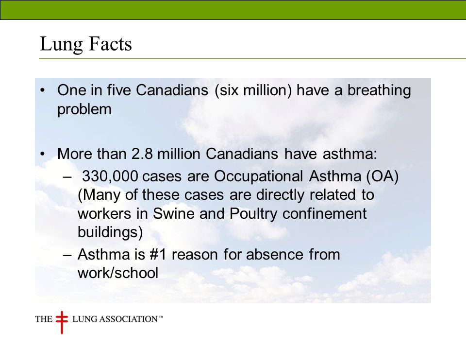 Lung Facts One in five Canadians (six million) have a breathing problem More than 2.8 million Canadians have asthma: – 330,000 cases are Occupational Asthma (OA) (Many of these cases are directly related to workers in Swine and Poultry confinement buildings) –Asthma is #1 reason for absence from work/school