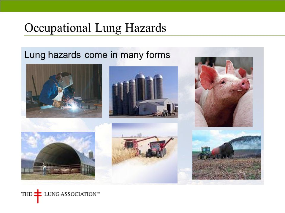 Occupational Lung Hazards Lung hazards come in many forms