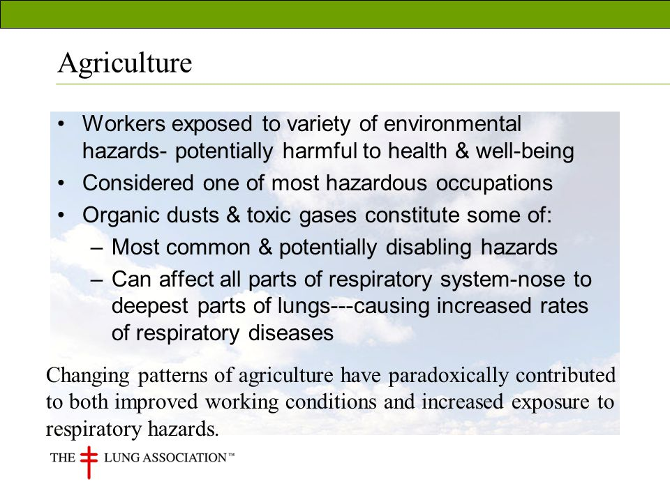 Agriculture Workers exposed to variety of environmental hazards- potentially harmful to health & well-being Considered one of most hazardous occupations Organic dusts & toxic gases constitute some of: –Most common & potentially disabling hazards –Can affect all parts of respiratory system-nose to deepest parts of lungs---causing increased rates of respiratory diseases Changing patterns of agriculture have paradoxically contributed to both improved working conditions and increased exposure to respiratory hazards.