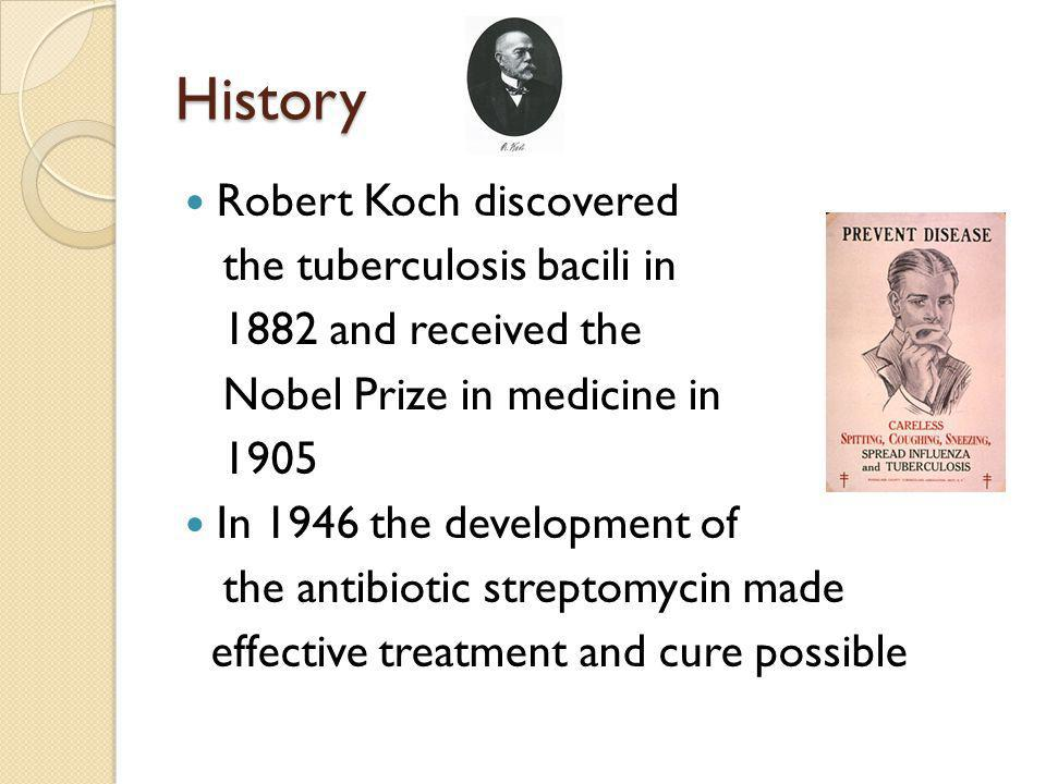 History Robert Koch discovered the tuberculosis bacili in 1882 and received the Nobel Prize in medicine in 1905 In 1946 the development of the antibiotic streptomycin made effective treatment and cure possible