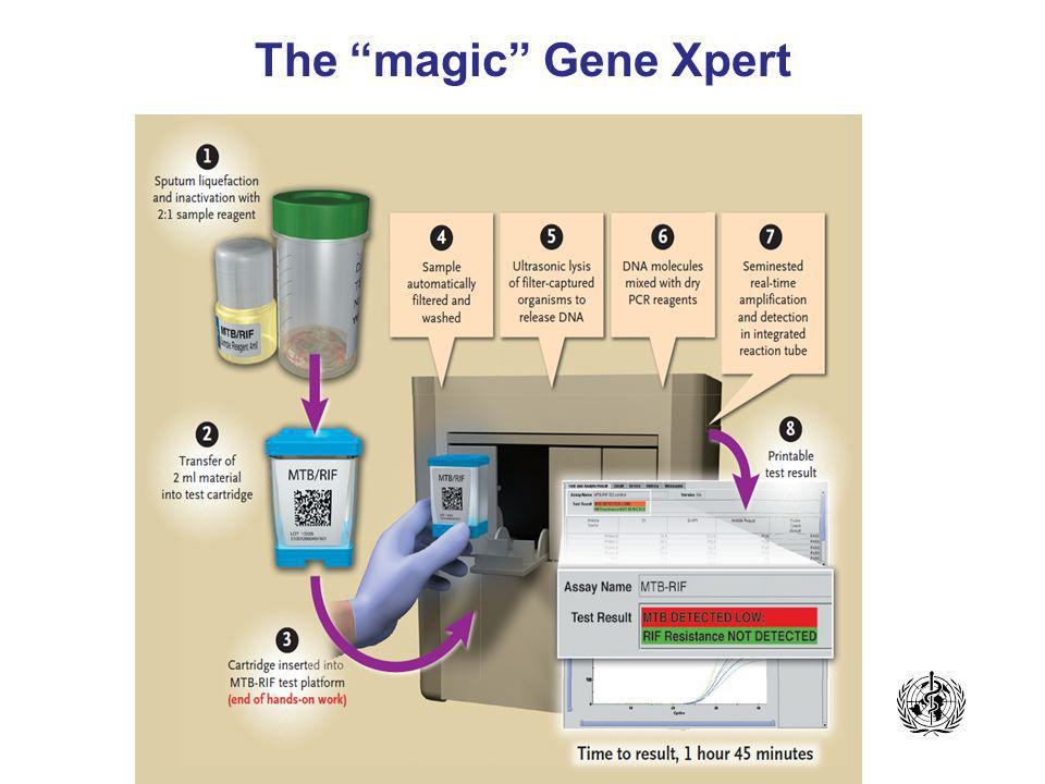 The magic Gene Xpert